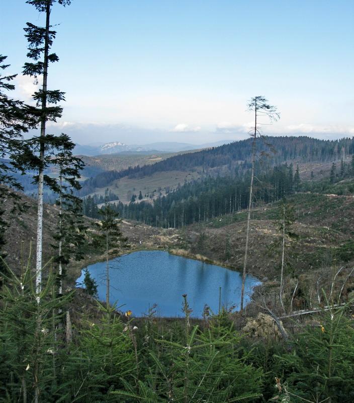 Jezerské jazero (919)