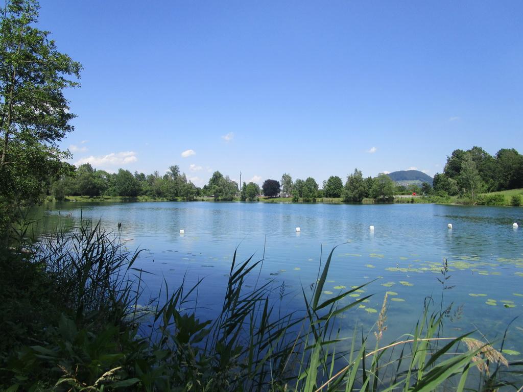 kupanie-na-dialnicnom-odpocivadle-petersberg