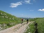 montenegro-planinou-sinjajevina-na-bajku